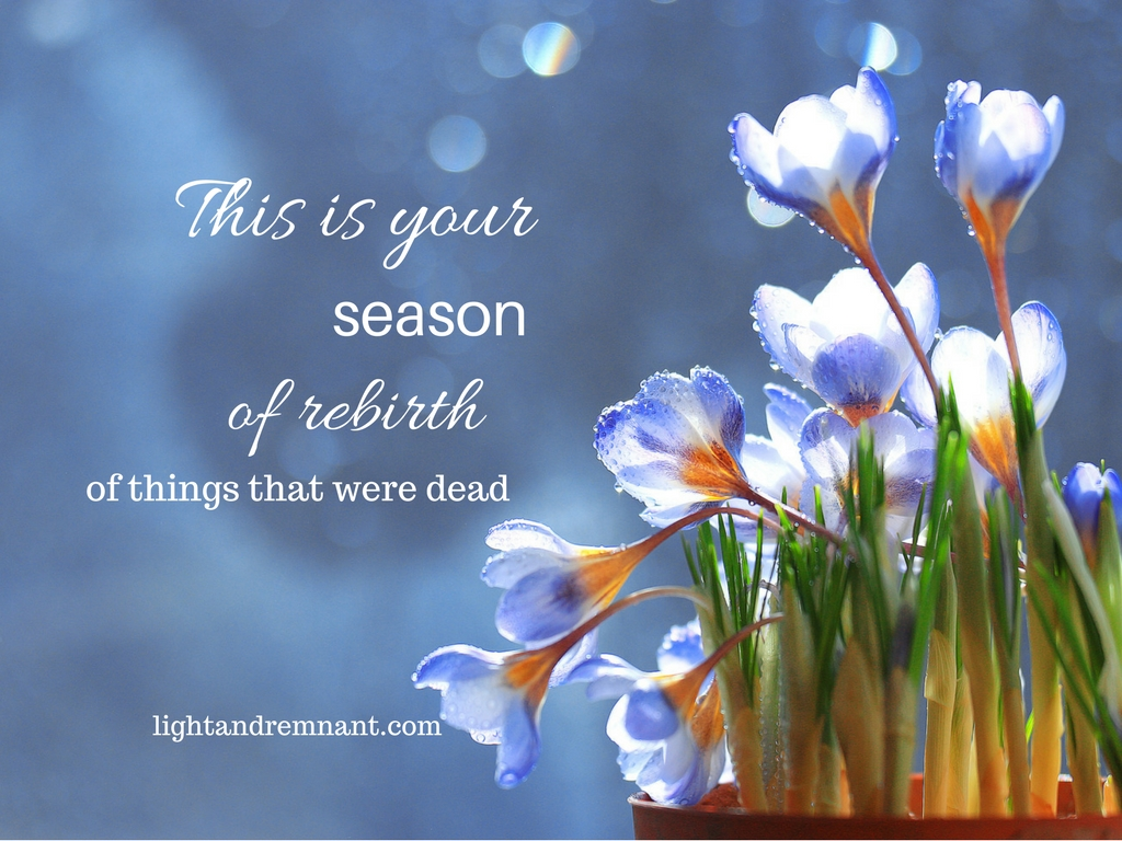 This is your season of rebirth